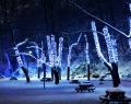 Ледяной городок в Измайловском ПКиО