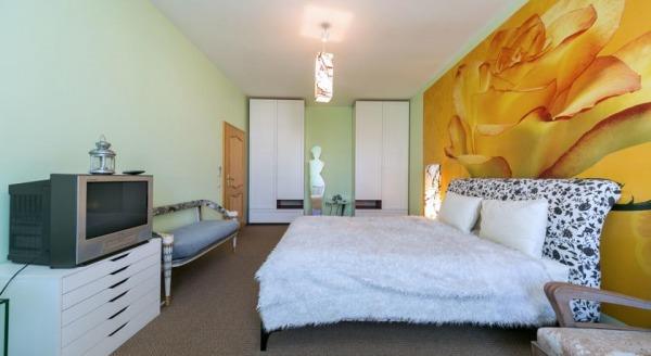 Luxury Apartment Novopodmoskovnyi