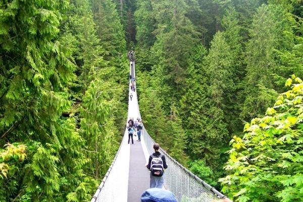 Подвесной мост «Skywalk»