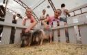 Контактный зоопарк «Жили у бабуси» на ВВЦ