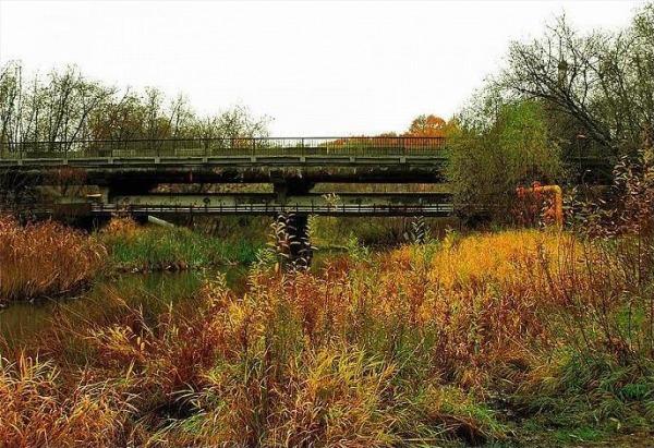 Медведковский 1-й, мост