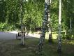 База отдыха «Зеленый остров»